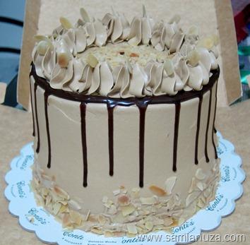Vianesse Mocha Cake Contis
