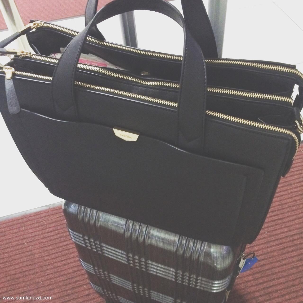 Forthpack Bag_parfois bag